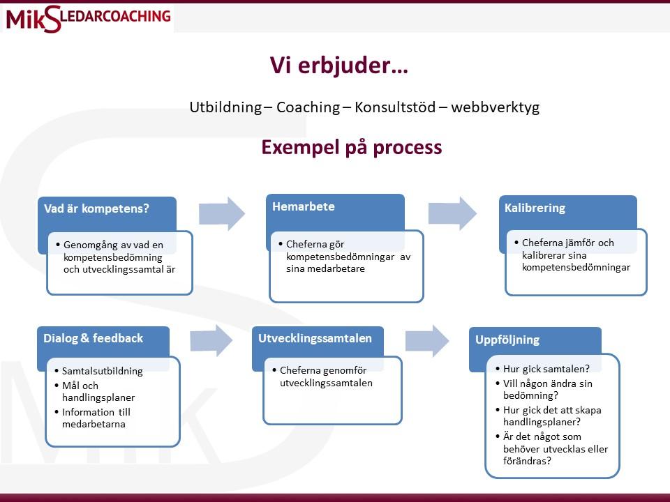 Utvecklingssamtal exempel på process.
